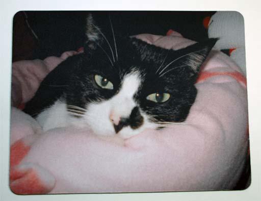 投稿写真から作ったマウスパッドの一例