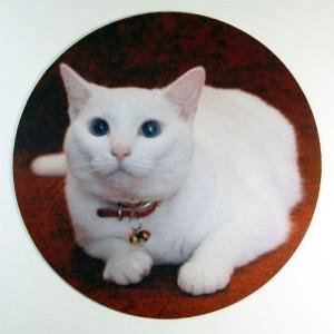 ナナのマウスパッド(丸)