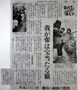 高島の人気者「かねちゃん」